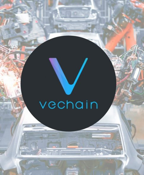VeChain Wine Bottle Collaboration With My Story Comes to Life -- Can Price Action Break $0.0042?