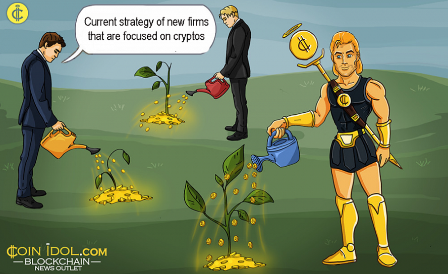 Current Strategy of New Firms That are Focused on Cryptos and Fintech