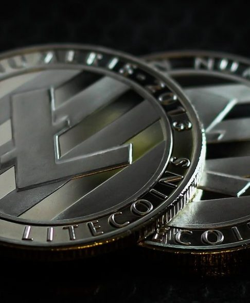 Litecoin [LTC]: CT and impending halving could push value of LTC over $50, say noted crypto-traders