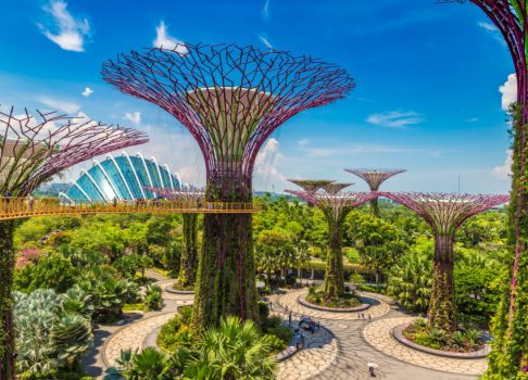 Singapore Sovereign Wealth Fund Invests in Cryptocurrency Exchange - Report